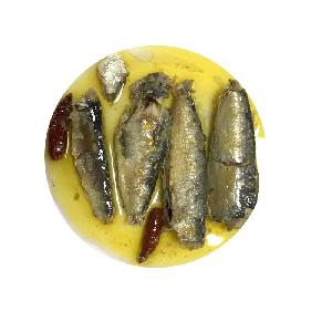 All types of canned sardine fishes