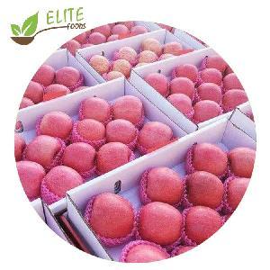 New crop Chinese Fresh fruit Red Fuji Apple price