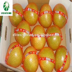 Excellent export quality fresh  juicy  honey  pomelo  grapefruit