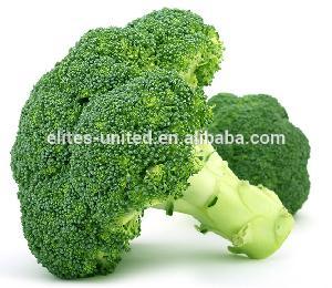 Chinese fresh broccoli price