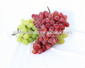 Sweet fresh red Red grape/Green grape/Bulk grape