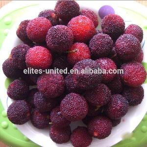 Export-grade  frozen   fruit  berry red  IQF  red bayberry
