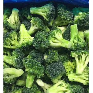 new season good quality good price  Frozen   Broccoli   cuts  IQF  Broccoli   cuts