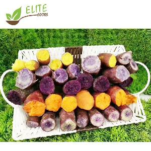 High Quality Frozen Roasted Sweet Potato IQF Export Sweet Potatoes with Cheap Price
