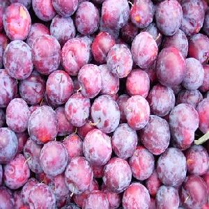 A grade quality Frozen Plum Halves IQF Plum New Crop with Cheap Price