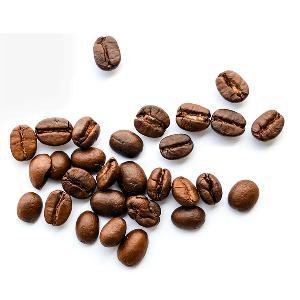 AA, A grade arabica  coffee   Yunnan  green  coffee   bean s