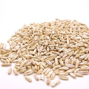 Top Grade 1 Rolled  Oats  , naked  oats / hulled   oats