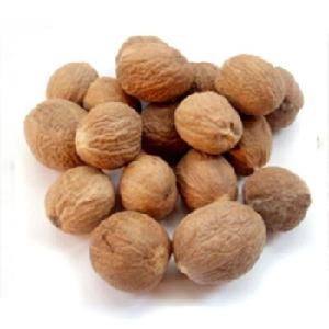 Top quality Dried  Natural   seasoning  nutmeg for sale/ Natural  Dried Nutmeg/Nutmeg
