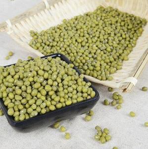 Grade Organic cultivated Green Mung Beans/Vigna