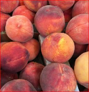 Fresh sweet peaches from Brazil