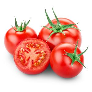 Quality Fresh Red Tomatoes