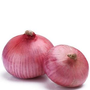 Fresh Onion (Gansu) 2018 NEW CROP HOT SALES