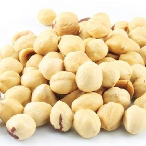 Hazelnuts  Roasted   Blanched Origin  Turkey