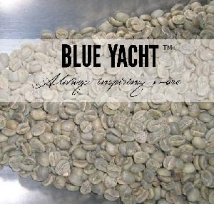 Natural Processed Coffee  Green   Bean s  Arabica   Bean s with High Quality