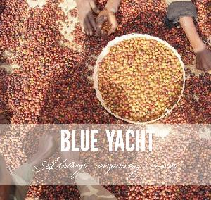 High-tech Green coffee beans Arabica beans natural Processing