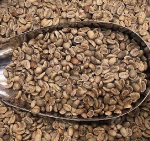 Yunnan Catimor Typica Arabica Green Coffee Bean with natural progressing