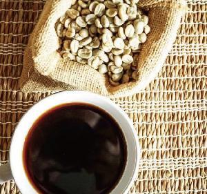 13-19 screen Catimor Typica Arabica Green Coffee Bean from Yunnan of China