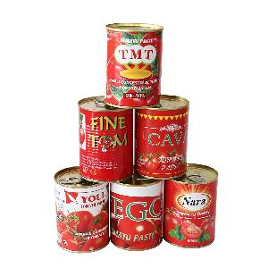 140g Canned Tomato Paste with High Quality