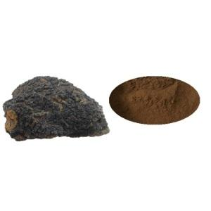 Health Supplement Dual Extract Chaga Mushroom Extract  Powder