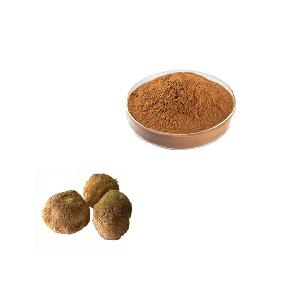 High quality Lion''s mane extract powder