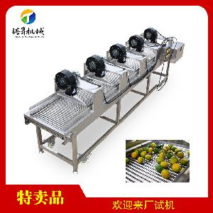 Industrial Passion Fruit Apple Kiwi Air  Dryer  Machine (TS-PX35)