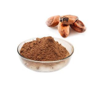 Premium Cocoa Powder for cake