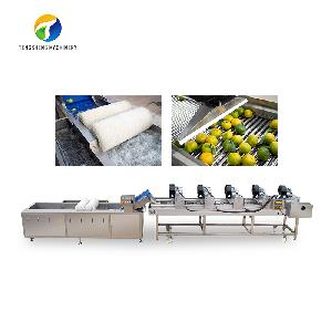 Stainless steel commercial fruit and vegetable washing and drying production line