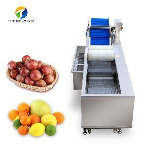 Large brush ozone disinfection fruit washing machine (TS-X300M)