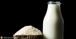 White Rice Protein Food powder