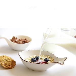 Organic Instant Rice Milk Powder