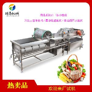 Industrial stainless steel eddy current vegetable fruit washer/washing machine