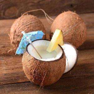 Taste Pure Fruit Coconut cream Powder  Vegan