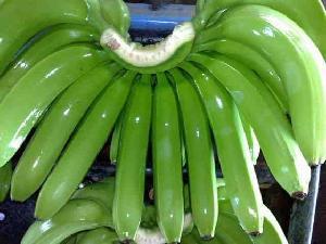 Premium Banana