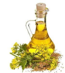 Hot   Sell ing Certified Refined Canola Oil / Rapeseed Oil