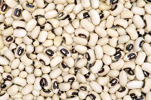 Black Eye White Beans Export Quality