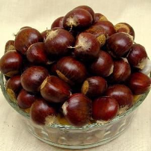 Best Selling Rich nutrition chestnut frozen for Human Consumption