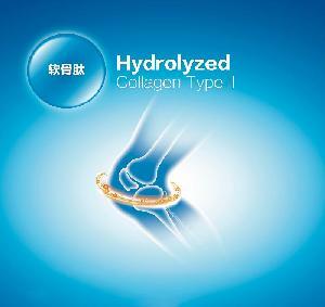 Hydrolyzed   Collagen  Type II