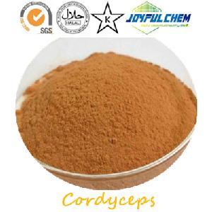 Cordyceps Extract Polysaccharide