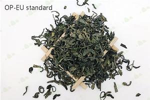 EU Standard OP High Quality Chunmee Green Tea