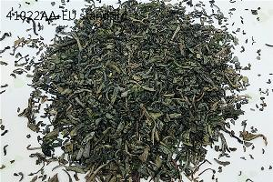 EU Standard 41022AA High Quality Chunmee Green Tea
