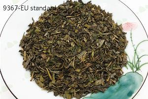 EU Standard 9367 High Quality Chunmee Green Tea