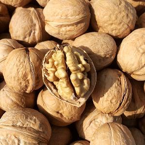 Walnuts Inshell