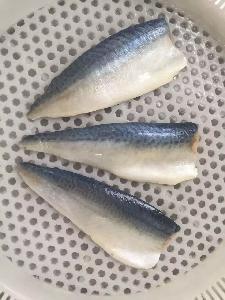 China   Export  Frozen Fish Mackerel Mackerel Frozen Fillets