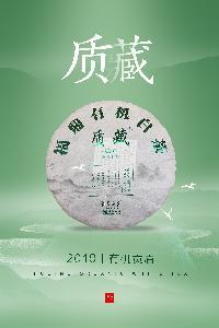 Organic White Tea Gongmei