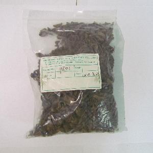 9501 fine gunpowder green tea FOR morocco