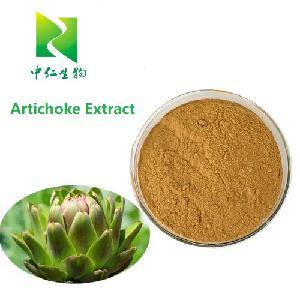 Factory Supply  Artichoke   Extract   Cynarin  2.5% 5%