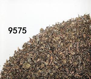 Chineses  gunpowder   green   tea   9375