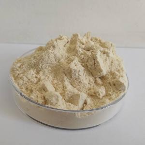 green mung bean protein powder unhulled