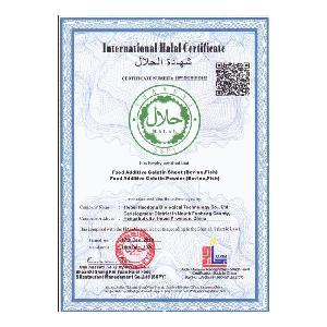 Edible Halal Fish Gelatin Manufacturer 250bloom