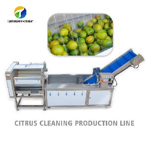 Citrus orange apple cleaning  machine  production line